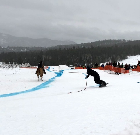 Skijoring in Big Sky